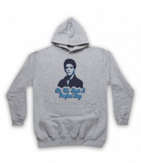 Lou Reed Perfect Day Hoodie Sweatshirt Hoodies & Sweatshirts