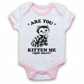 Are You Kitten Me Right Meow? Kidding Me Now Animal Parody Slogan Baby Grow Bib Baby Grows & Bibs
