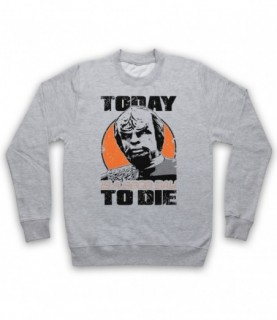 Star Trek Worf Today Is A Good Day To Die Hoodie Sweatshirt Hoodies & Sweatshirts