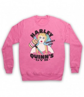 Birds Of Prey Harley Quinn's Gym Hoodie Sweatshirt Hoodies & Sweatshirts